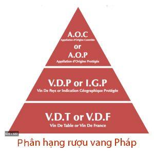 Phan Hang Cac Cap Bac Ruou Vang Phap
