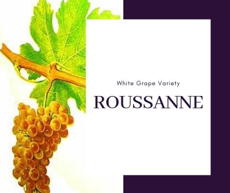Roussanne