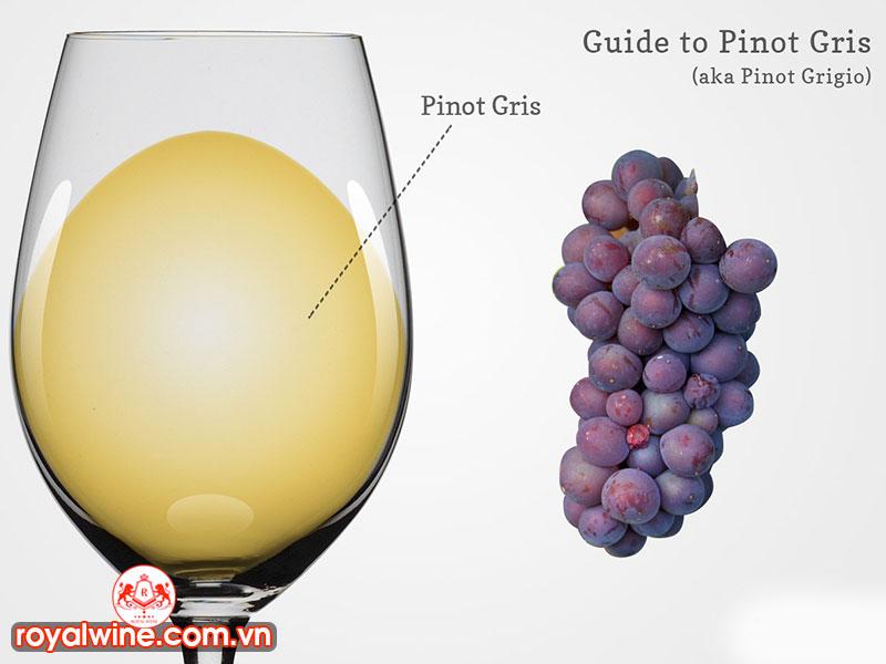 Các Món Ăn Dùng Kết Hợp Với Pinot Gris Tốt Nhất
