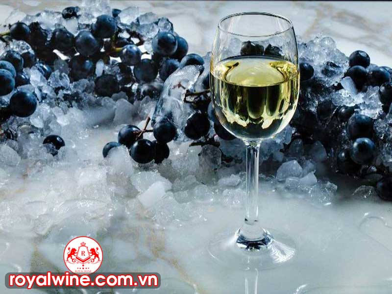 Ice Wine Bắt Nguồn Từ Đâu?