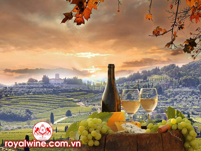 Những Điều Thú Vị Mà Rượu Vang Ý Đem Lại Cho Người Sử Dụng
