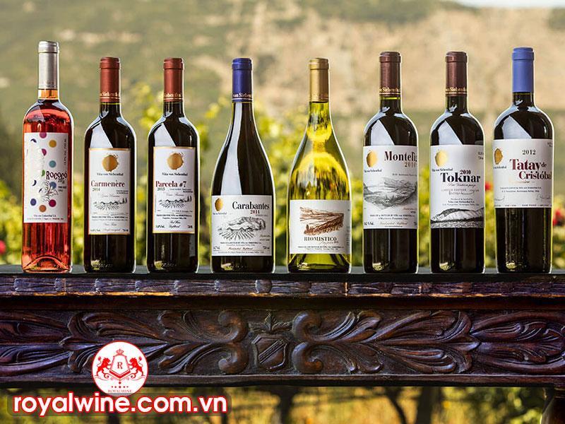 Rượu Vang Chile Có Những Đặc Điểm Như Nào