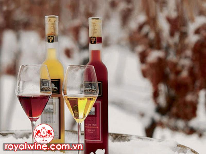 Sự Hấp Dẫn Của Rượu Vang Tuyết Canada Hiện Nay