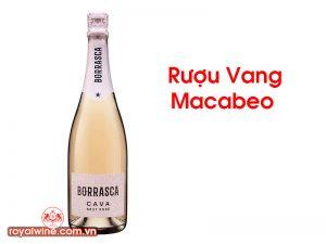 Rượu Vang Macabeo